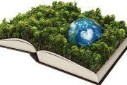 Relación entre ecología y teología